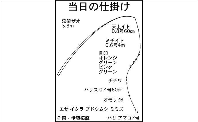 渓流エサ釣りで『ヒレピン』アマゴ10匹キープ【滋賀・野洲川】