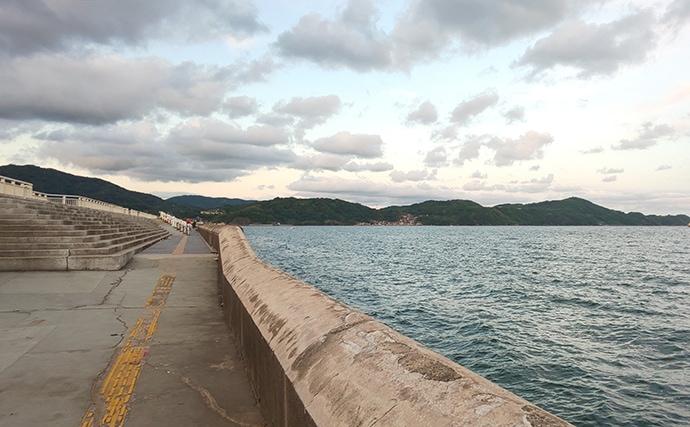 【2020初夏】波止タチウオ好釣り場:和歌山マリーナシティ