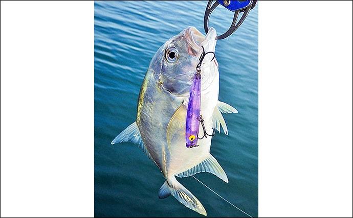 身近な材料で釣り具を自作:歯ブラシルアー メッキやシーバスに有効?
