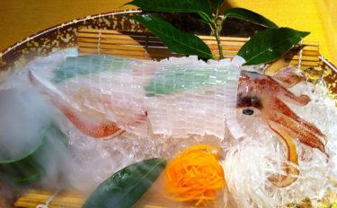 イカの名産地が変わるかも? 呼子で不漁のケンサキイカが宮城県で豊漁