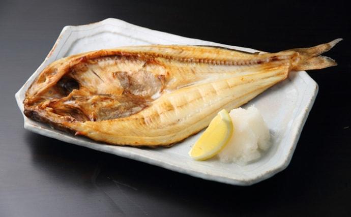 夏が旬の『ホッケ』のちょっと変わった生態 回遊魚から根魚に変化?