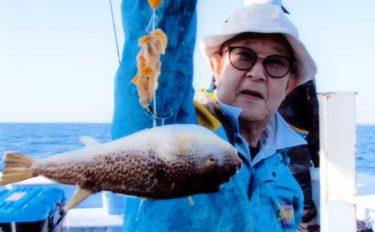 『カットウ』釣りで40cm頭にショウサイフグ28尾【茨城・不動丸】