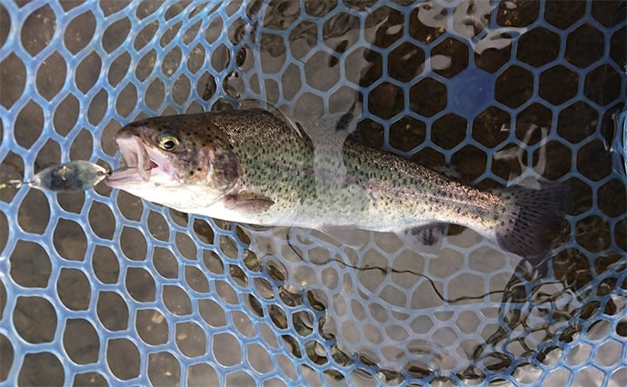 エリアトラウトで数釣り 放流後30分間で10匹【川場フィッシングプラザ】