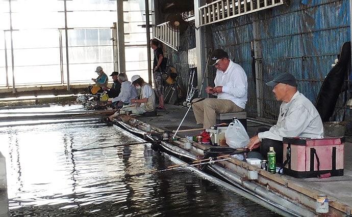 屋内釣り堀で荒食い高活性のヘラブナ20匹をキャッチ【へら釣り西池】