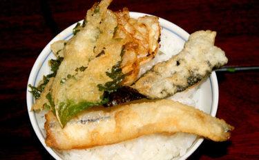 【釣果グルメ】ちょい投げ五目天丼 シロギスメインにフワフワ絶品