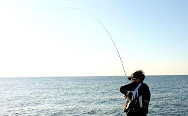 陸から大型魚を狙う『磯ビッグゲーム』 魅力と必要なアイテムを解説