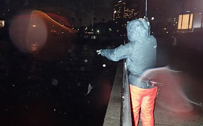 魚釣りで『雨』が歓迎される4つの理由 降り方でプラスにもマイナスにも
