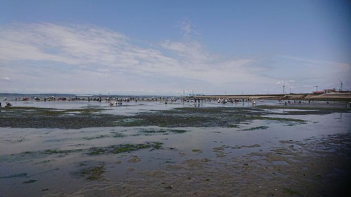 潮干狩りデートでハマグリ大量ゲット 採取のコツも紹介【一色海岸】
