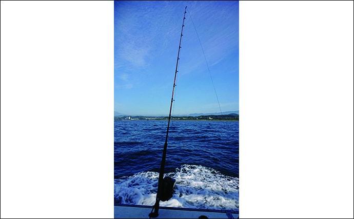 西湘沖『ビシアジ』釣りの魅力 都心からアクセス良好で40cm超の大型も