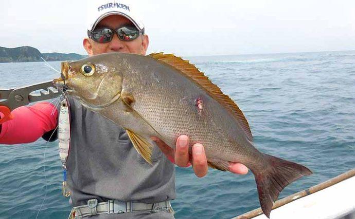 SLJでジャンボイサギ連発 魚種の差はロッドの違い?【たいし丸】