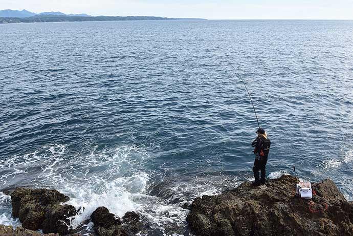 梅雨グレ攻略のカギは『サラシ』狙い メリットと具体的な釣り方を紹介