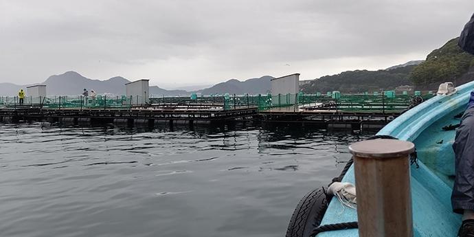 海上釣堀の2大釣法『ウキ釣り』&『ミャク釣り』を徹底比較
