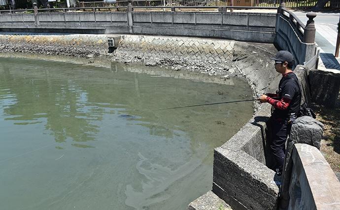 大阪湾チニング「ガチ勢」がベイトリールタックルを好んで使う3つの理由