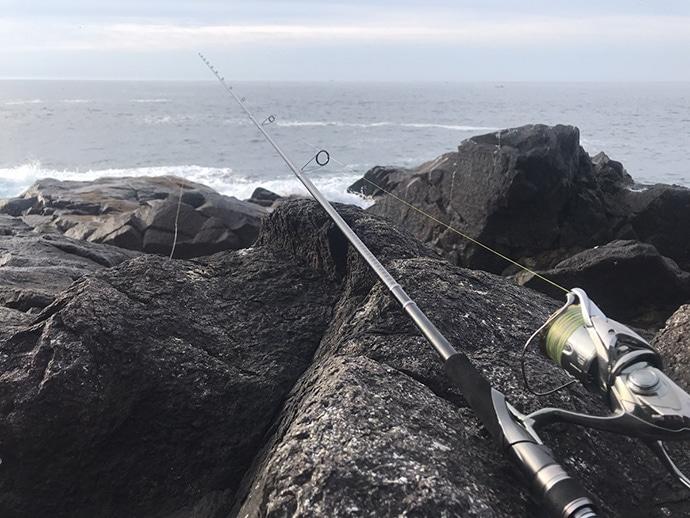 【宮城2020】陸っぱりルアーターゲット3選 釣り初心者にもオススメ