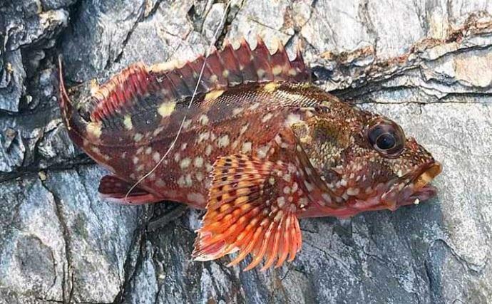 釣り人にありがちな『験担ぎ』方法5選 釣行前日に魚を食べてはダメ?