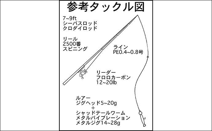 【東海2020夏】陸っぱり『ルアーマゴチ』入門 いよいよ最盛期突入