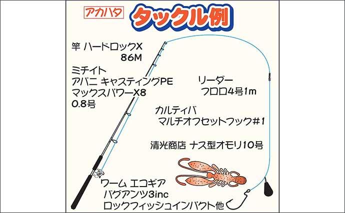 レンタルボート釣行でカワハギ&アカハタ連発【神奈川・三崎港】