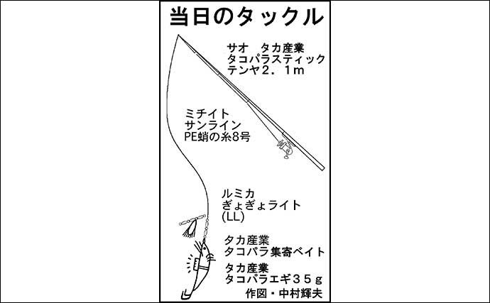 陸っぱりエギタコ釣りで本命3匹 良型バラシに悶絶【愛知・師崎港】