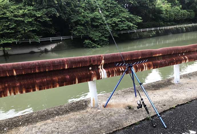 【東海2020】ぶっこみウナギ釣り攻略 仕掛けにひと工夫で釣果アップ