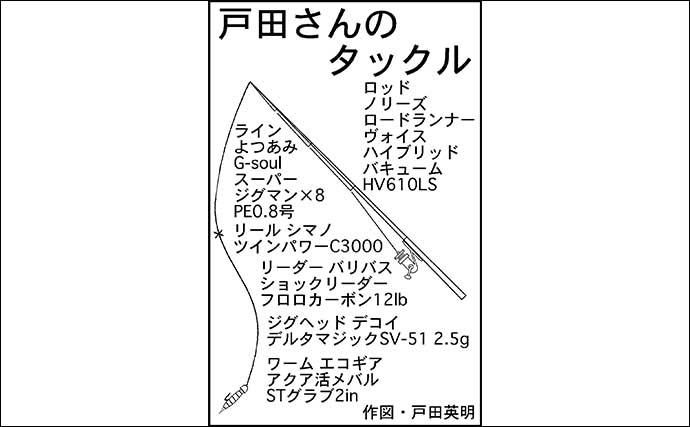 リバーナイトゲームでシーバス&50cmナマズ手中【愛知・新川】