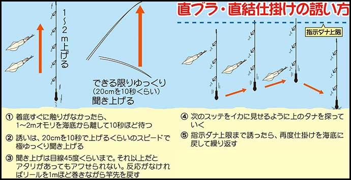 【関東2020】マルイカ釣り入門 タックル・仕掛け・釣り方まで徹底解説