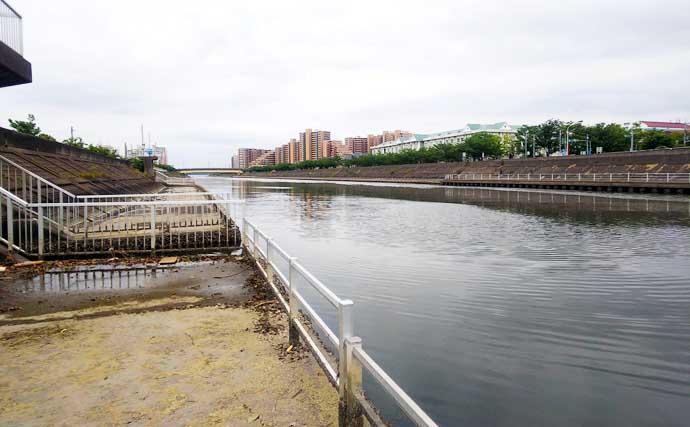 3時間のハゼ釣りで本命55尾 初物は天ぷらで堪能【千葉・境川】