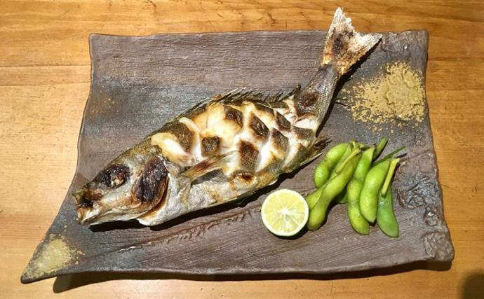 成長遅い「イサキ」が養殖されている理由とは 中国産の稚魚がポイント