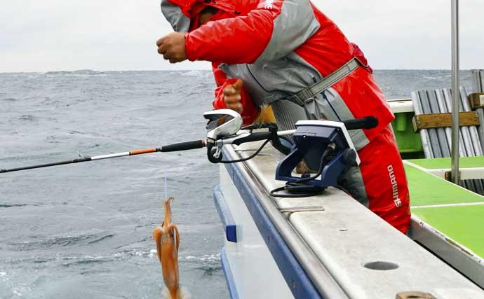 【関東2020】スルメイカ釣り入門 ブランコ&直結仕掛けの釣り方キホン