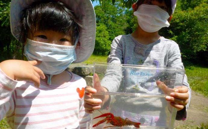ファミリーでザリガニ釣り 肉の脂身が特エサ【愛知・岩倉市自然生態園】