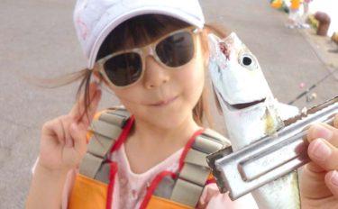 子供と一緒に釣り行こう:お手軽サビキ釣でサバ快引【三重・四日市港】