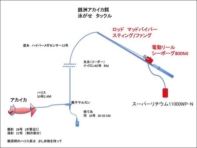 Dr.近藤惣一郎フィッシングクリニック:電動リールで「銭洲カンパチ」攻略