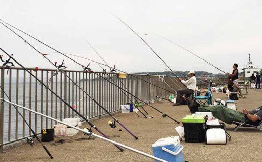【2020】海釣り公園にオススメのロッド6選 「竿2本ルール」とは?