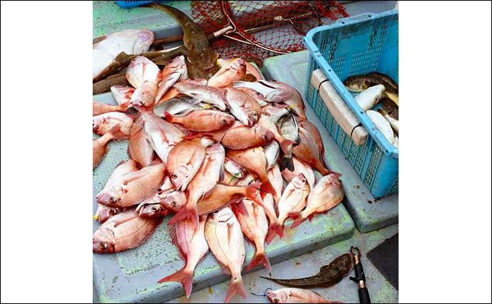 【福岡】沖のエサ釣り最新釣果 イカ泳がせ釣りで19kgヒラマサ堂々浮上