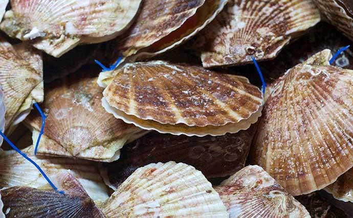 水産庁が魚介類の『販促』取り組みを開始 「社会変化に応じた支援を」