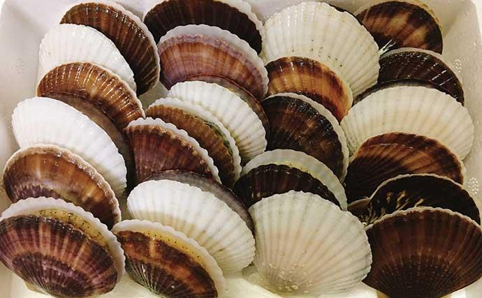 『ホタテの貝殻』を新型コロナウイルス対策に活用? 医療の現場にも