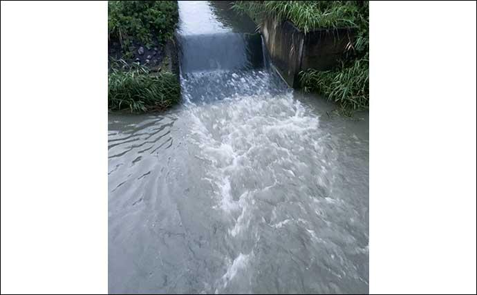 用水路での『デイナマ』ゲームで粘りの1本キャッチ【静岡・安間川】