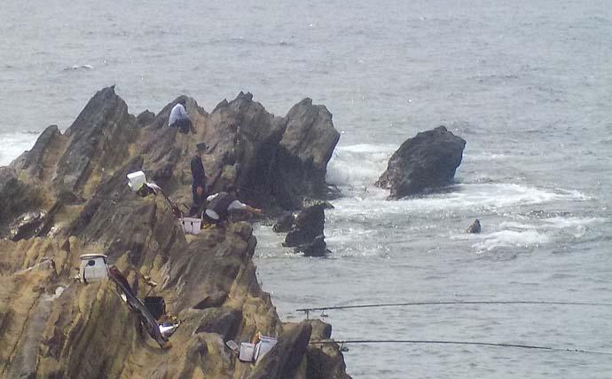 泳がせ釣りでアオリイカ狙い 潮動き始めに2kg級手中【神奈川・城ヶ島】