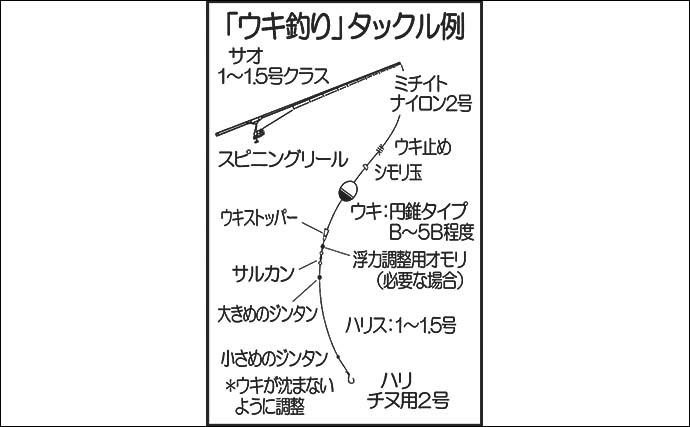 【九州2020夏】家族で楽しむ『海釣り公園』 オススメの釣り方3選