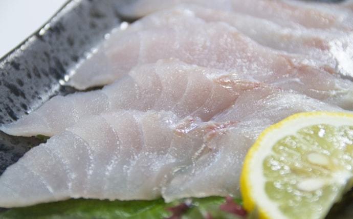 【西日本編】8月に旬を迎える海の幸5選 沖縄のマグロは未冷凍?