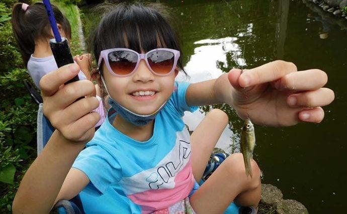 クチボソ&マブナ釣りで束釣り達成 子連れにもオススメ【野山北公園】