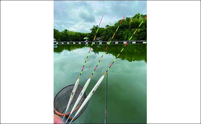 ヘラブナ釣り初心者入門 夏はチョウチン両ダンゴで決まり(第10回)