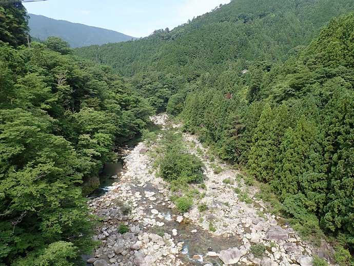 渓流ルアー釣行で25cm頭にアマゴ16匹 アユカラーがアタリ【芦廼瀬川】