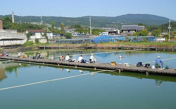 夏模様の管理池ヘラブナ釣り エサを信じて1人勝ち釣果【竜田川釣り池】