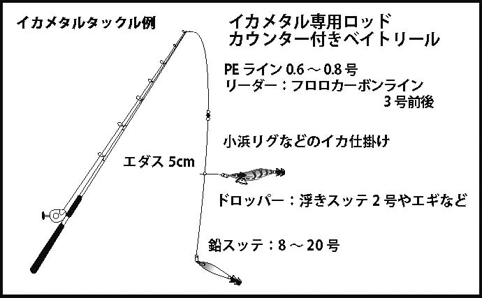 【関西2020】ケンサキイカ半夜船のススメ 早起きが苦手な人にオススメ