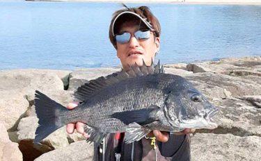 フカセ釣りで年無し含む良型チヌ連発 予想外のマダイも浮上【淡路島】