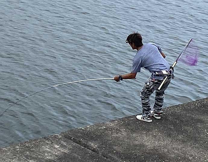 初チャレンジの「落とし込み釣り」で48cm頭にチヌ8尾【須磨一文字】