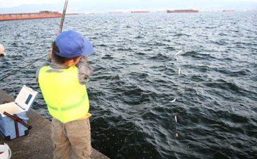 夏のサビキ釣りは子連れ釣行に最適 仕掛けにひと工夫でトラブル防止