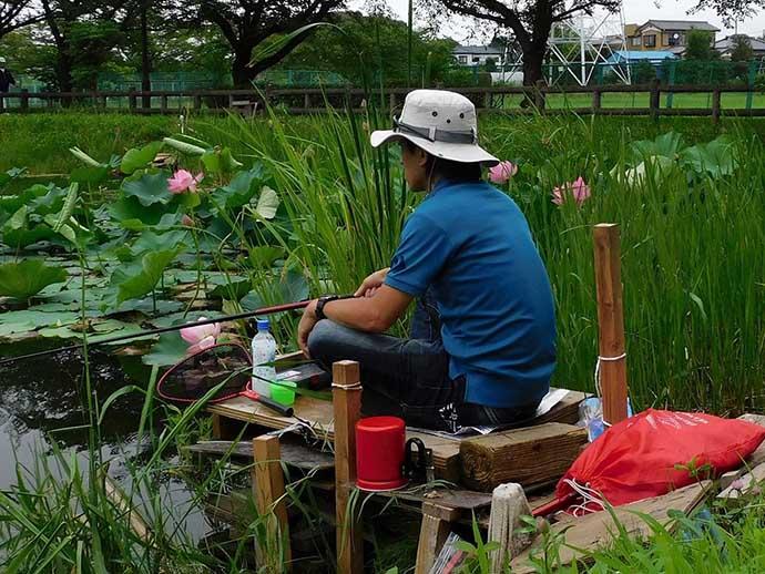 「蓮の花」に囲まれ淡水五目釣り堪能  20尾釣果【埼玉・慈恩寺沼】