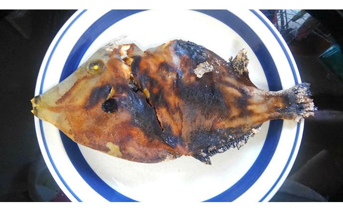 夏カワハギは「皮を剥がない」調理法がオススメ 肝が少なくても美味?
