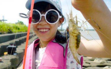 子供と一緒にテナガエビ釣り ソーセージで本命手中【三重・揖斐川】